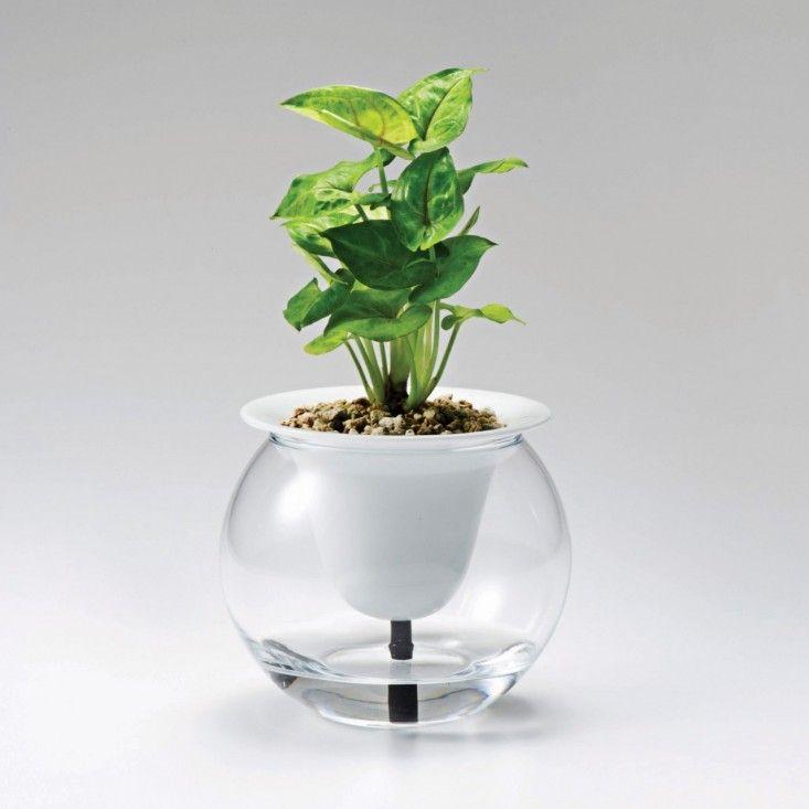 10 Easy Pieces Self Watering Planters Self Watering Plants