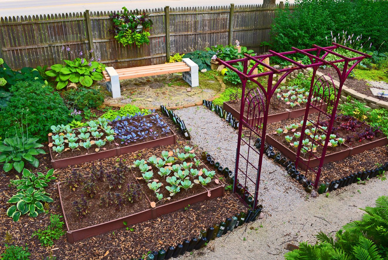 how to grow a vegetable garden in shade the story of a french rh pinterest com
