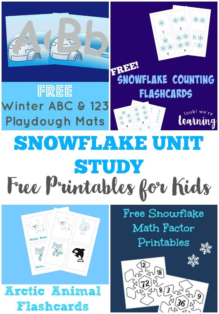 free printable snowflake unit study look we re learning winter rh pinterest com