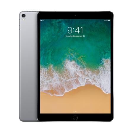Apple 10.5 inch iPad Pro Wi Fi + Cellular 256GB Gray | Ipad