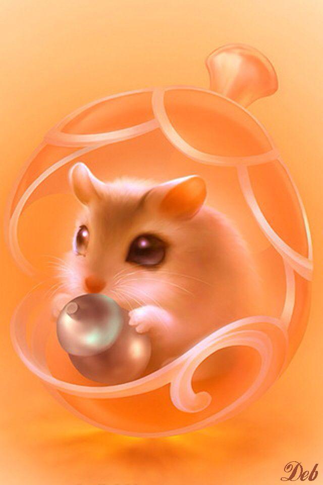 Hamster Iphone Wallpaper Background Cute Little Animals Cute Art Cute Drawings