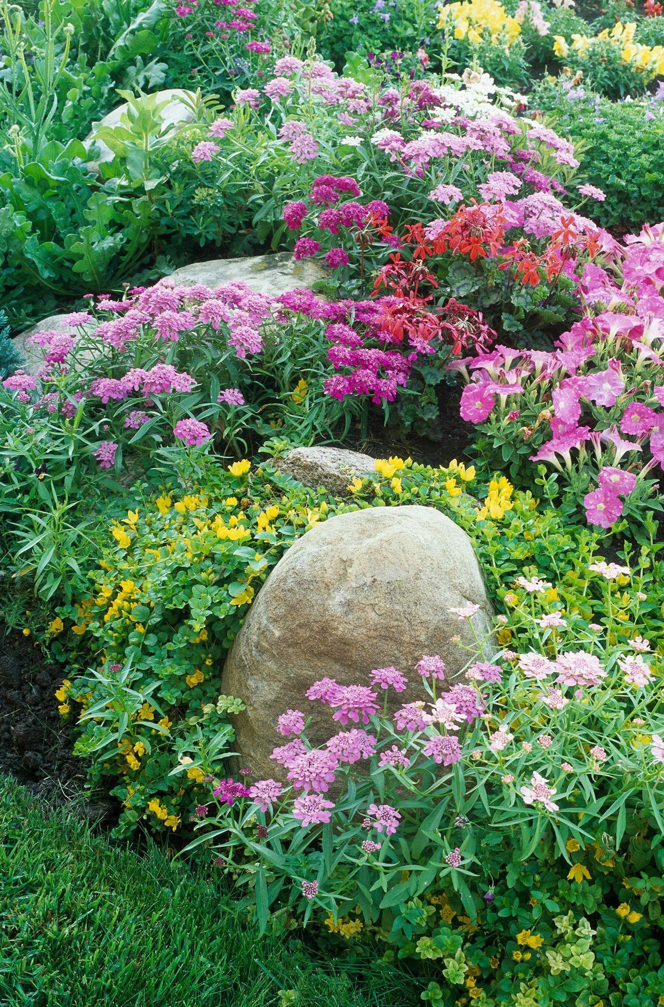 cottage garden designs bring a classic soft vibe to your landscape rh pinterest com