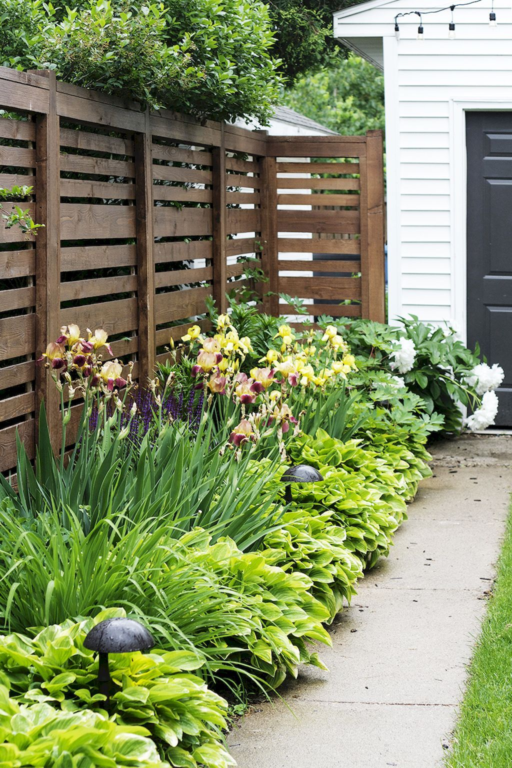 50 Backyard Privacy Fence Landscaping Ideas on