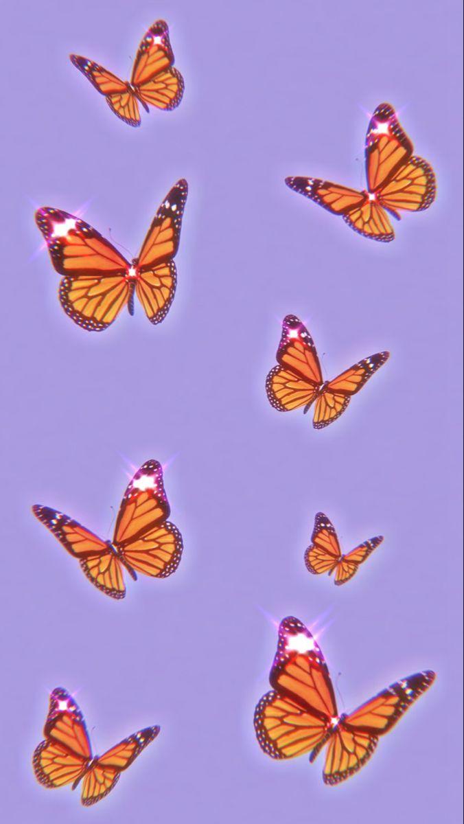 Pin By Sky On Sfondi Tumblr In 2020 Butterfly Wallpaper Iphone Blue Butterfly Wallpaper Aesthetic Iphone Wallpaper