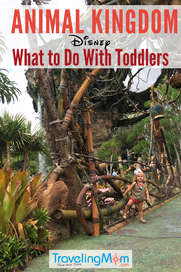 Taking toddlers to Animal Kingdom at Disney World? These are the best Walt Disney World parks and rides for little ones. #WaltDisneyWorld #AnimalKingdom #toddlers #animalkingdom