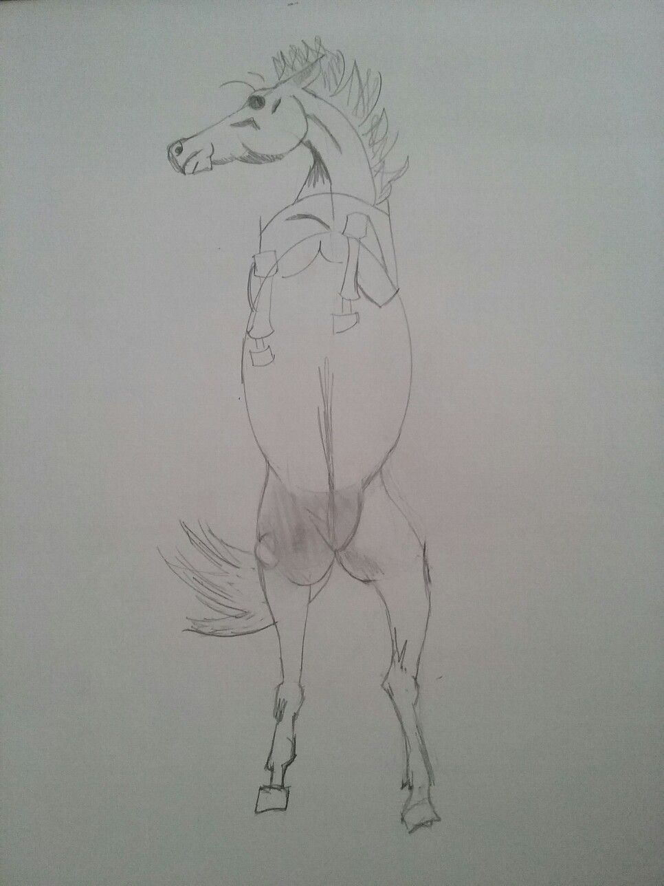Unfinished drawing of a horse by me