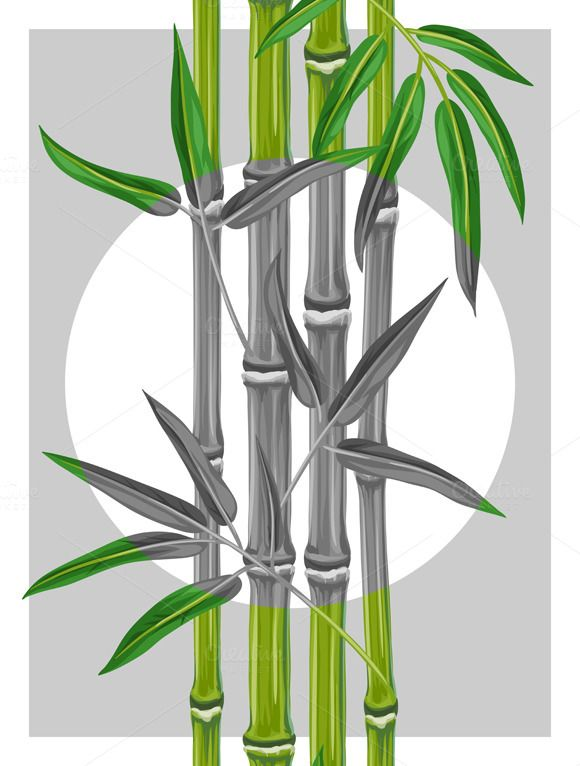 Poster with bamboo plants on @creativework247