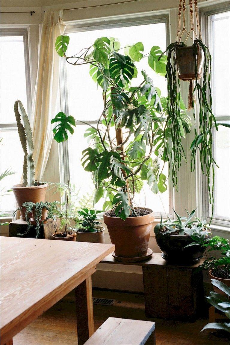 75 intelgent apartment garden indoor decor ideas apartment rh pinterest com