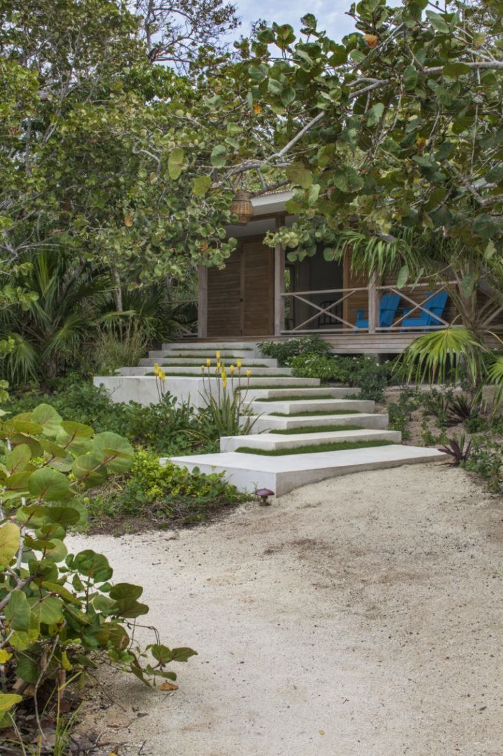 Seaside Gardening: 10 Ideas for Serene Coastal Landscapes ...