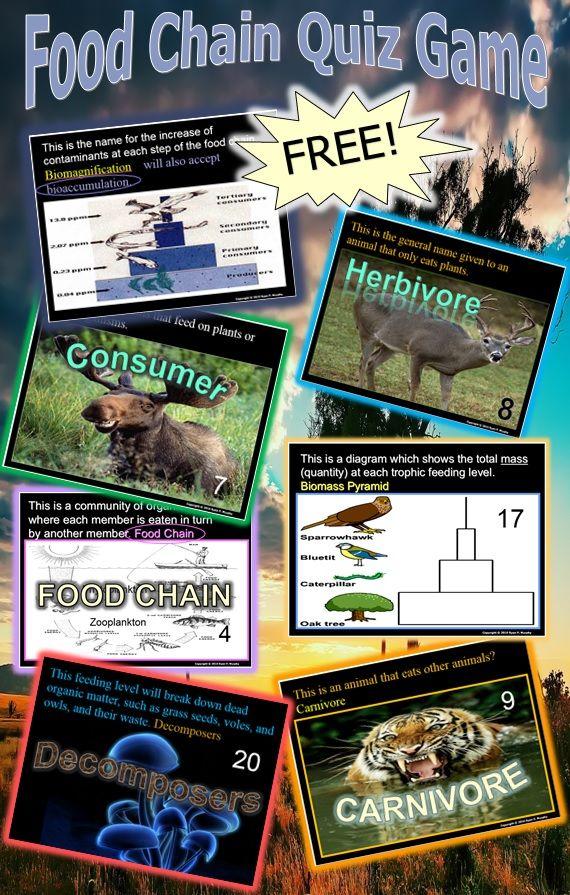 Food Chain Quiz Game Fun classroom activities, Science