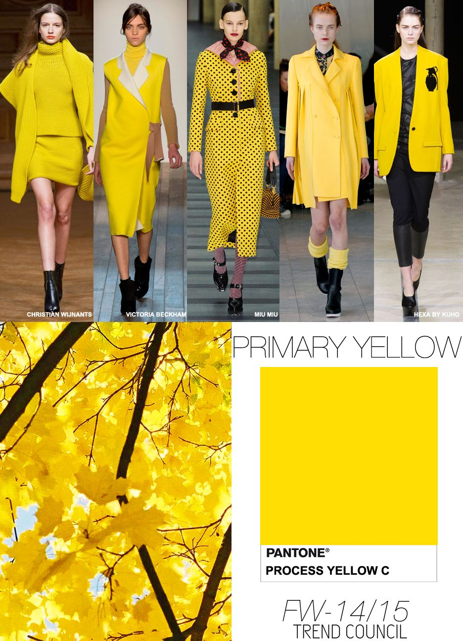 Calcit Citr 205 N Primary Yellow Colour Forecast Fall