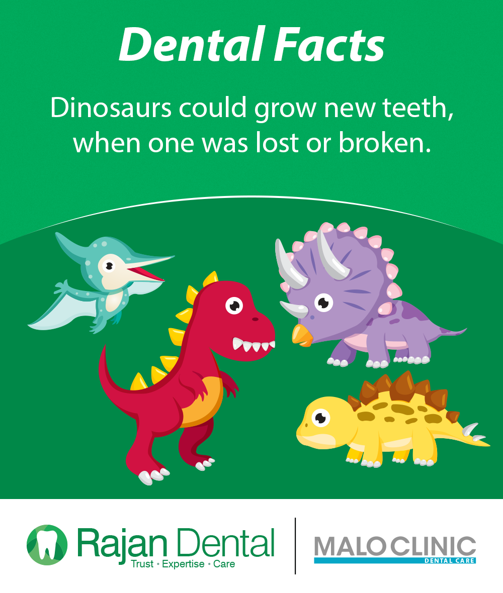Dental Facts!  Dinosaurs could grow new teeth, when one was lost or broken..  #rajandental #dentaltreatment #dentalclinic #dentalhealth #dentalfacts
