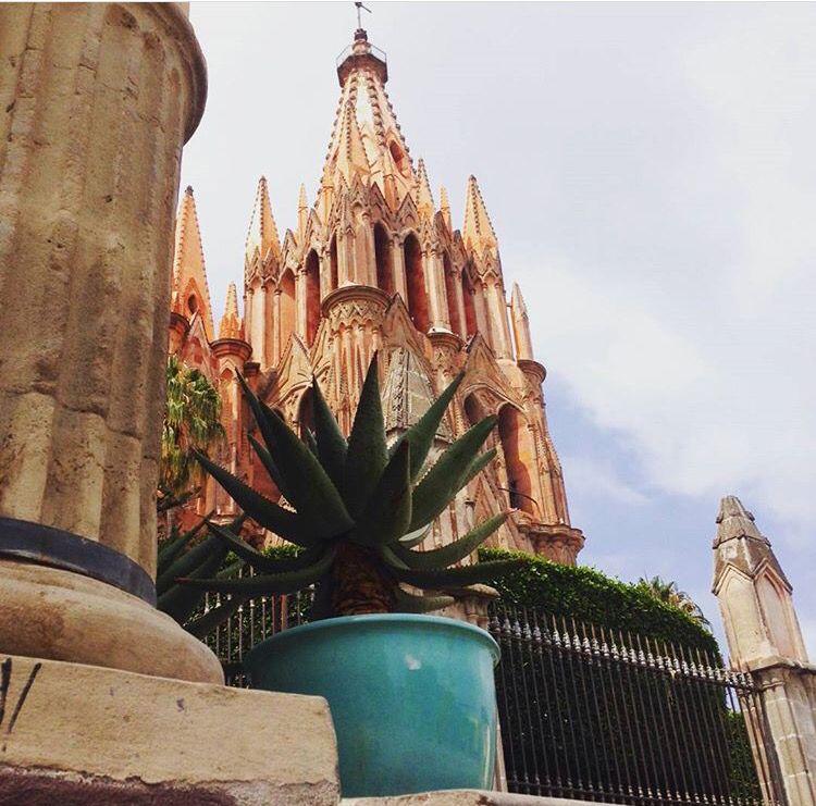 Macetón aqua en San Miguel de Allende #trinitate #macetas #jardín #deciración #interiores