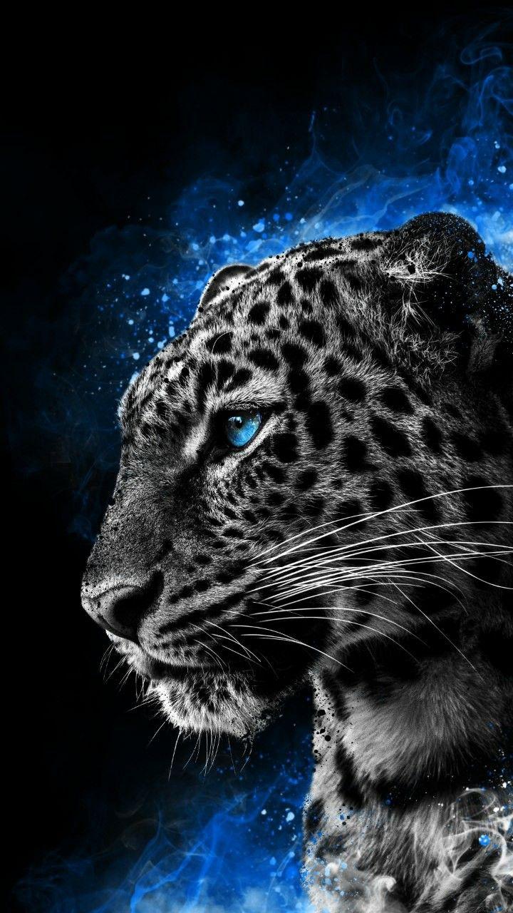 Cheetah Galaxy Eyes animals digitalart Дикие животные