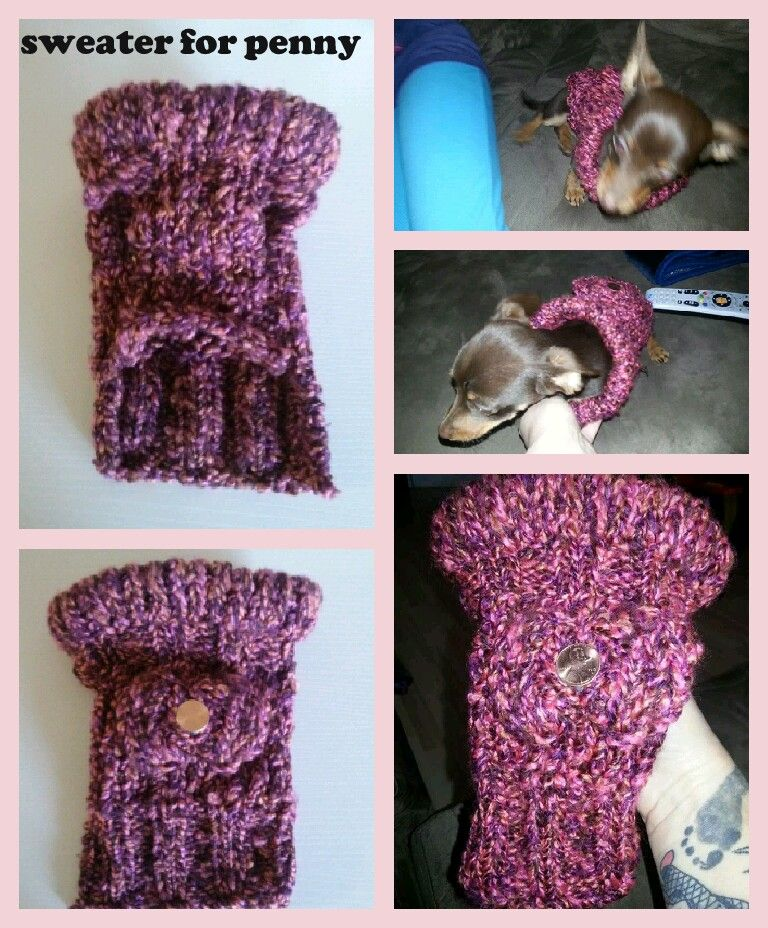 Loom knit dog sweater #2   Loom knitting projects, Loom ...