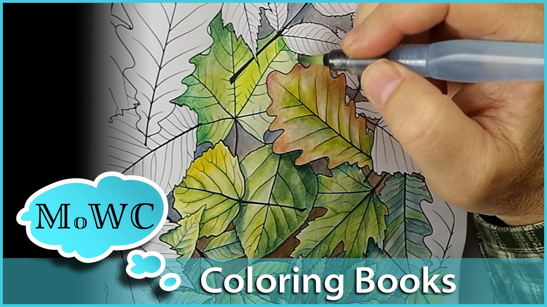 Adult Coloring Books Are Everywhere But Can You Watercolor In Them Most Werent