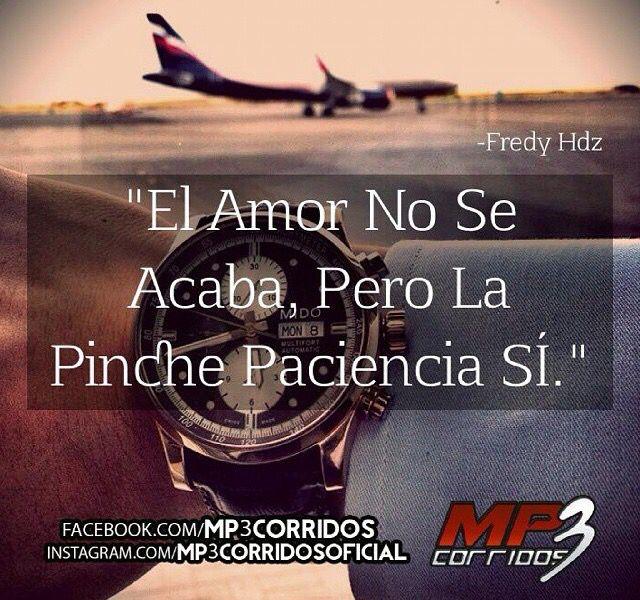 Corridos Vip Frases De Pendejos Pinterest Frases Chingonas