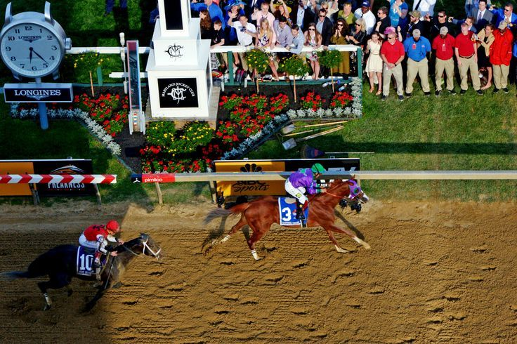 california chrome pictures | Chrome Captures the Second Jewel in the Triple Crown. The horse with ...