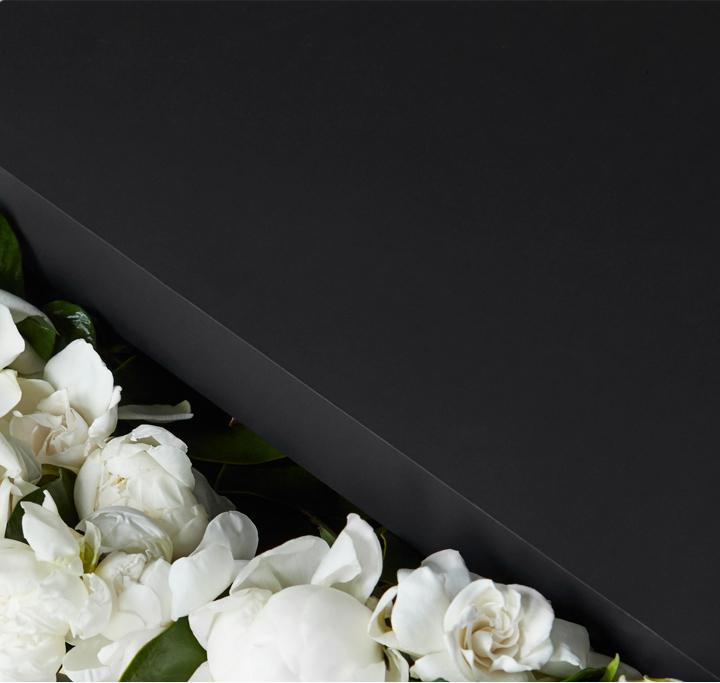 Best Gardenia Flower Delivery Luxury Flowers In A Box Luxury Flowers Flower Boxes Flower Delivery