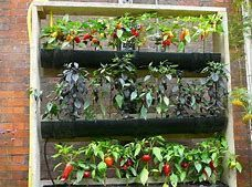 Vertical Gardening Ideas That Are Easy To Achieve and Look Great #VerticalGarden #gardenideas #kräutergartenbalkon