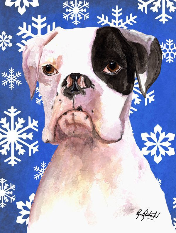 Cooper Winter Snowflakes Boxer Flag Canvas House Size RDR3003CHF
