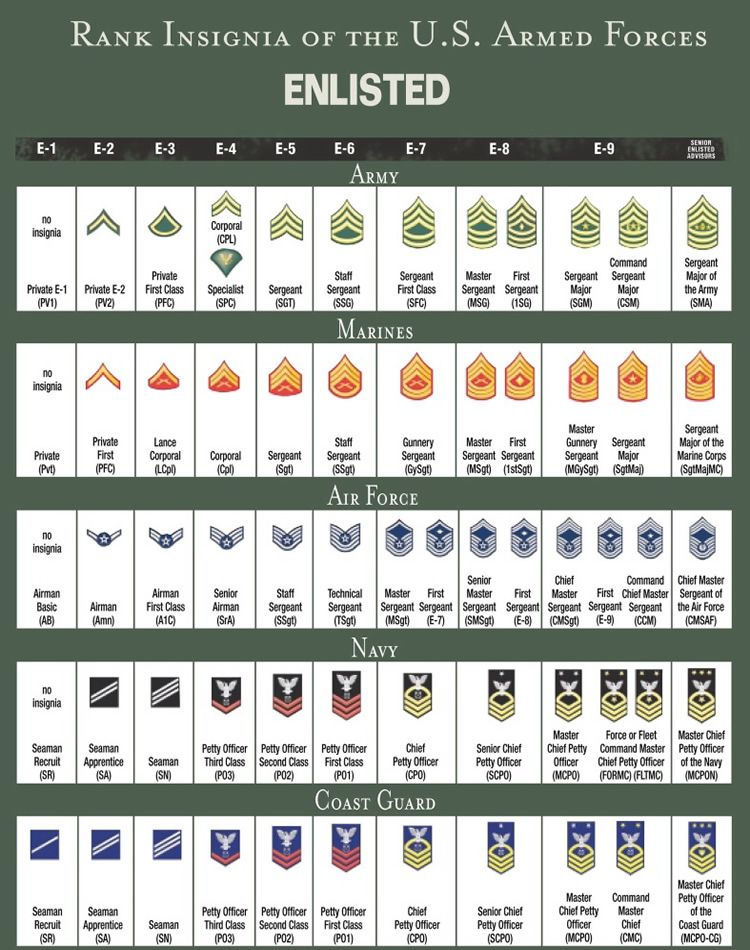 Rank structure and insignia of enlisted military personnel all branches us service navy also best charts images rh pinterest