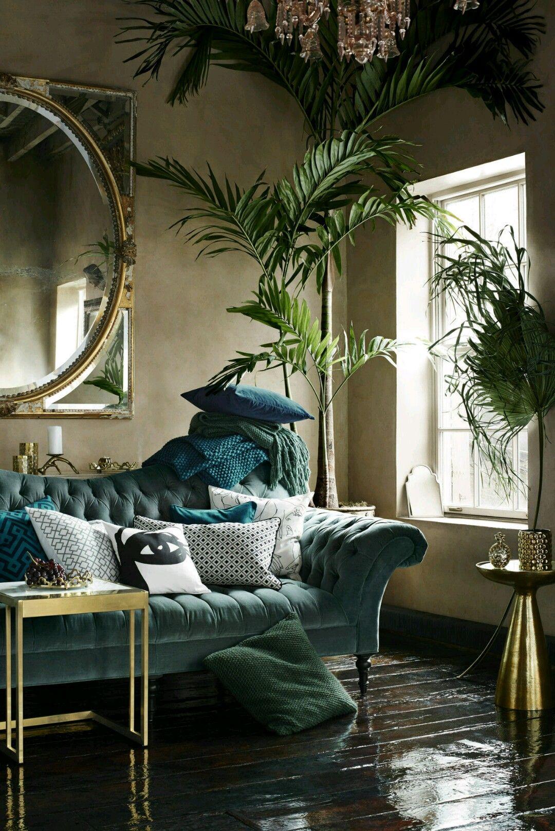 Room ideas Tropical living room HOUSE