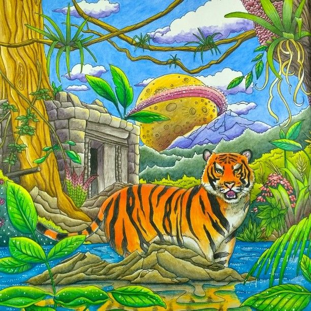 The Tiger Picture From Canadian Colouring Book Legendary Landscapes Mostly Done With Inktense Pencils