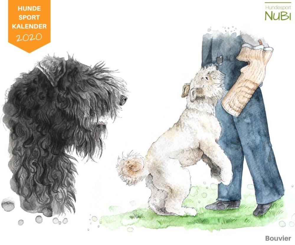 Hundesport Kalender 2020 mit handgemalten Aquarellen