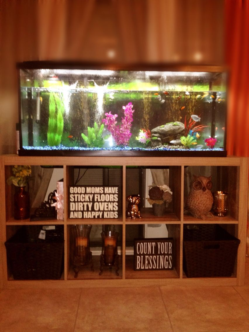 Fish tank used - Fish Tank I Used A Cube Organizer Shelf