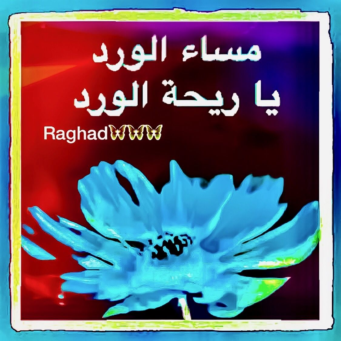 DesertRose,;,مساء الورد,;, | Good;Evening;&Good;Night; | Night