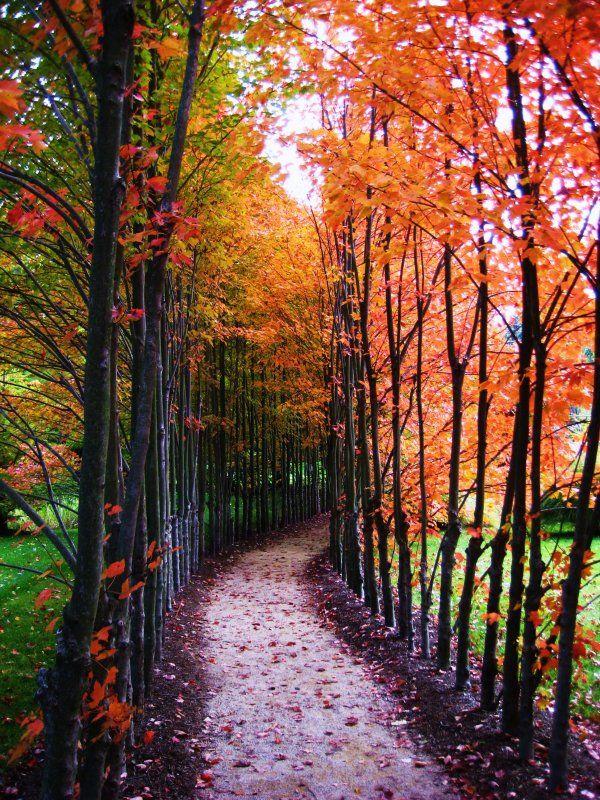 Beautiful Fall Weather Beautiful Nature Scenery Nature