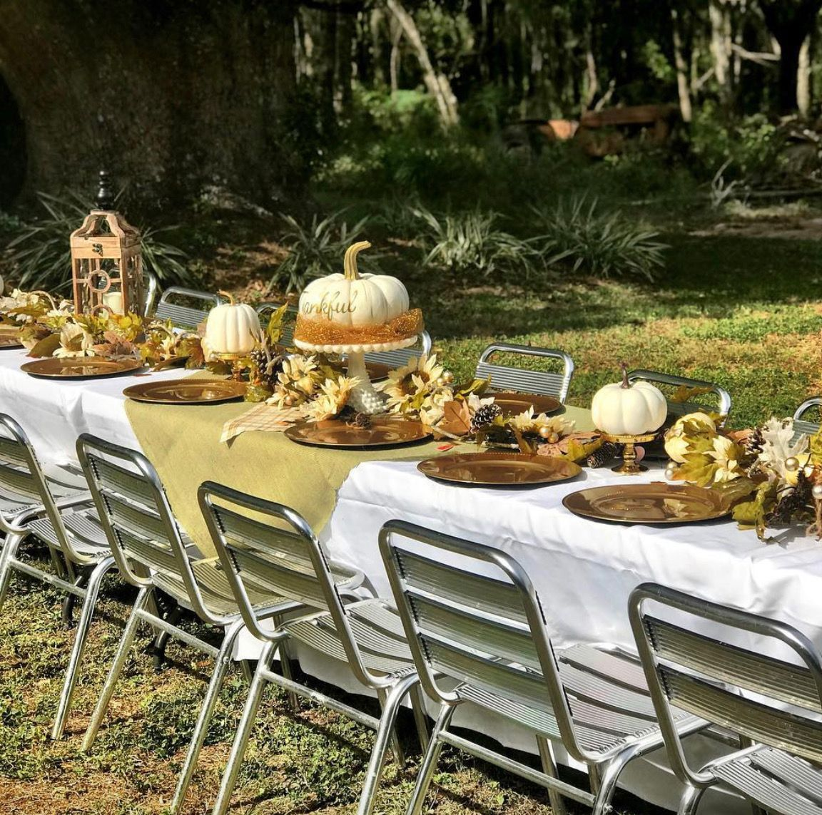 Pin by Beth Hill on Thanksgiving Dinner | Outdoor ...