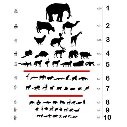 For The Animal In You Kids Eye Exams Charts For Kids Eyesight Problems