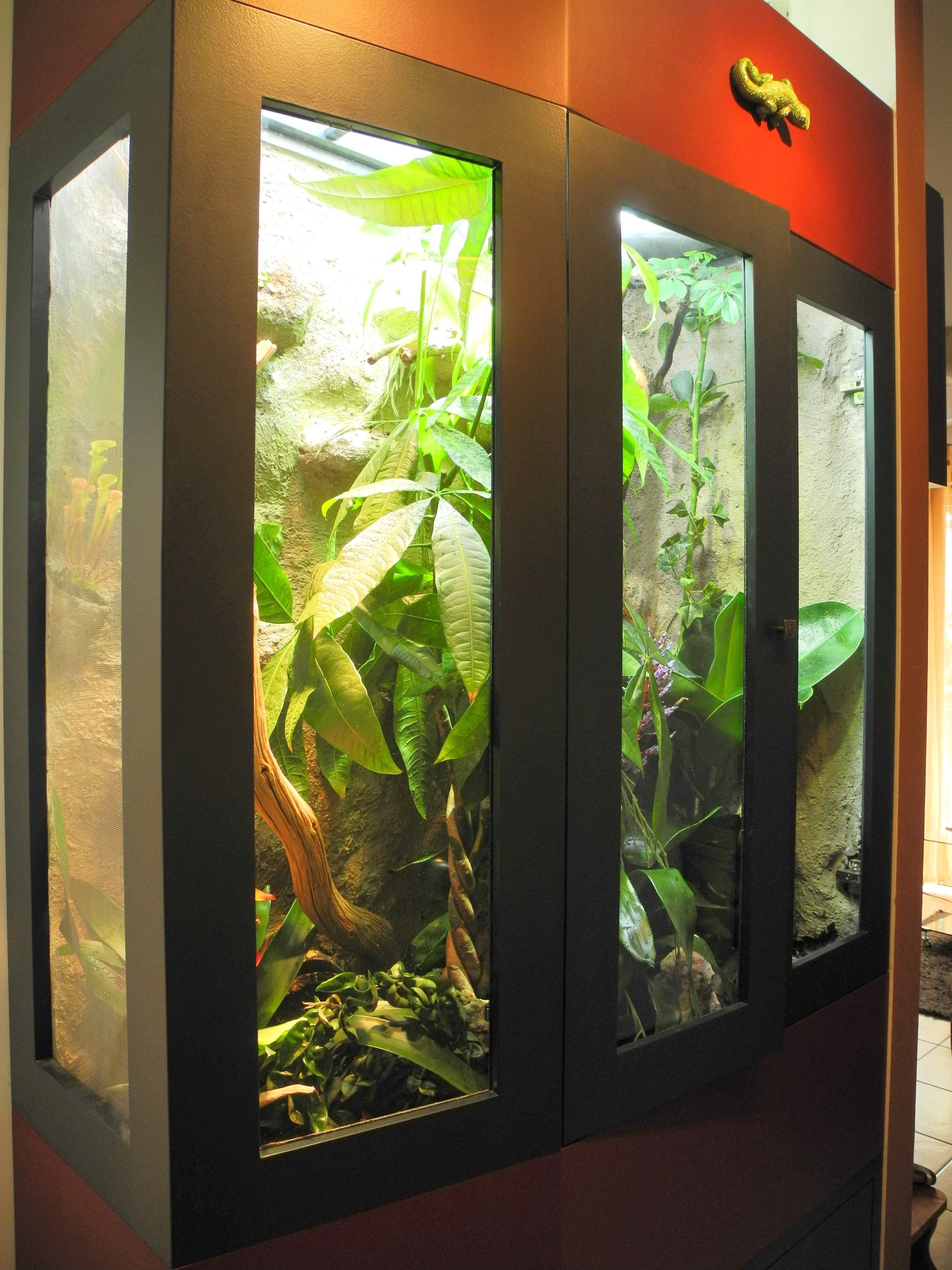 terrarium f r jemencham leon bauanleitung zum selber bauen kerzen pinterest bauanleitung. Black Bedroom Furniture Sets. Home Design Ideas