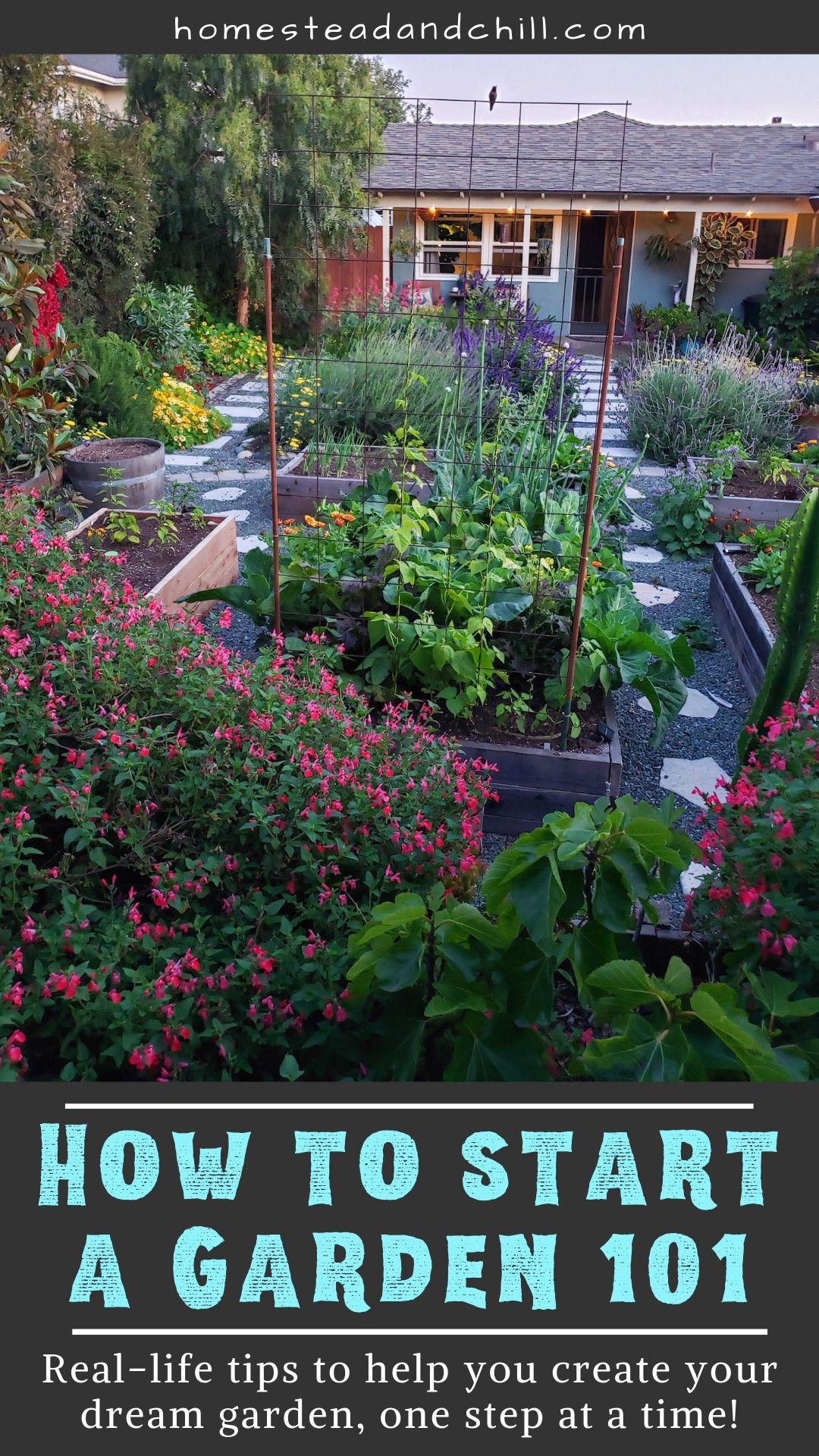 How To Start A Garden 101 Starting A Garden Gardening 101 Plants