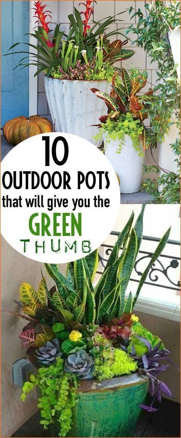 outdoor pots that will give you the green thumb houseplants rh pinterest com mx