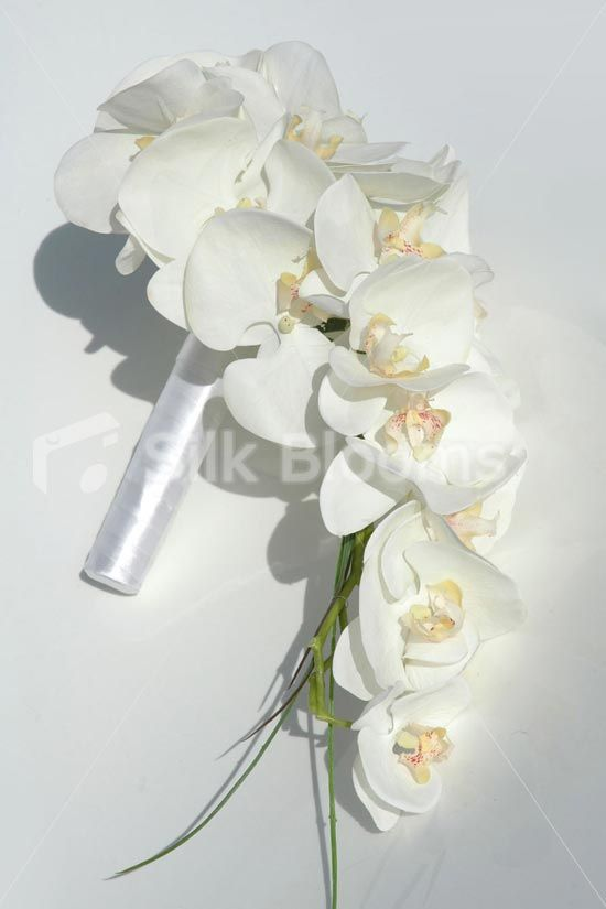 orchid flower for wedding white phalaenopsis orchid cascading bridal bouquet 6289