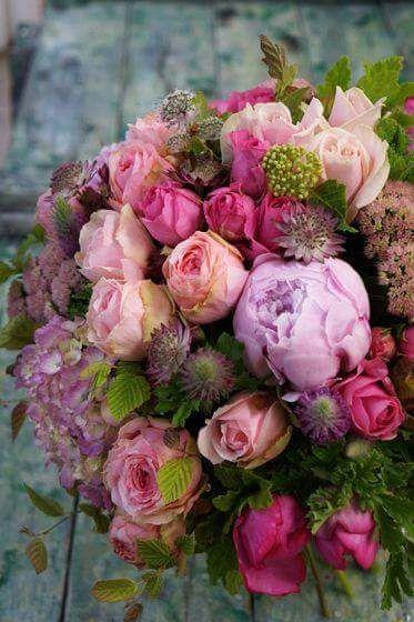 "raindropsonroses-65: "" (via Provence, France | Art & Provence) "" #schöneblumen"