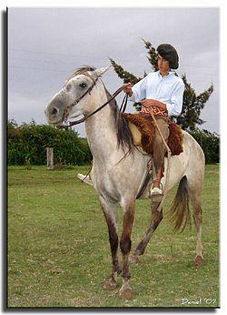 Gaucho - con boina ,bombachas y alpargatas montado a caballo