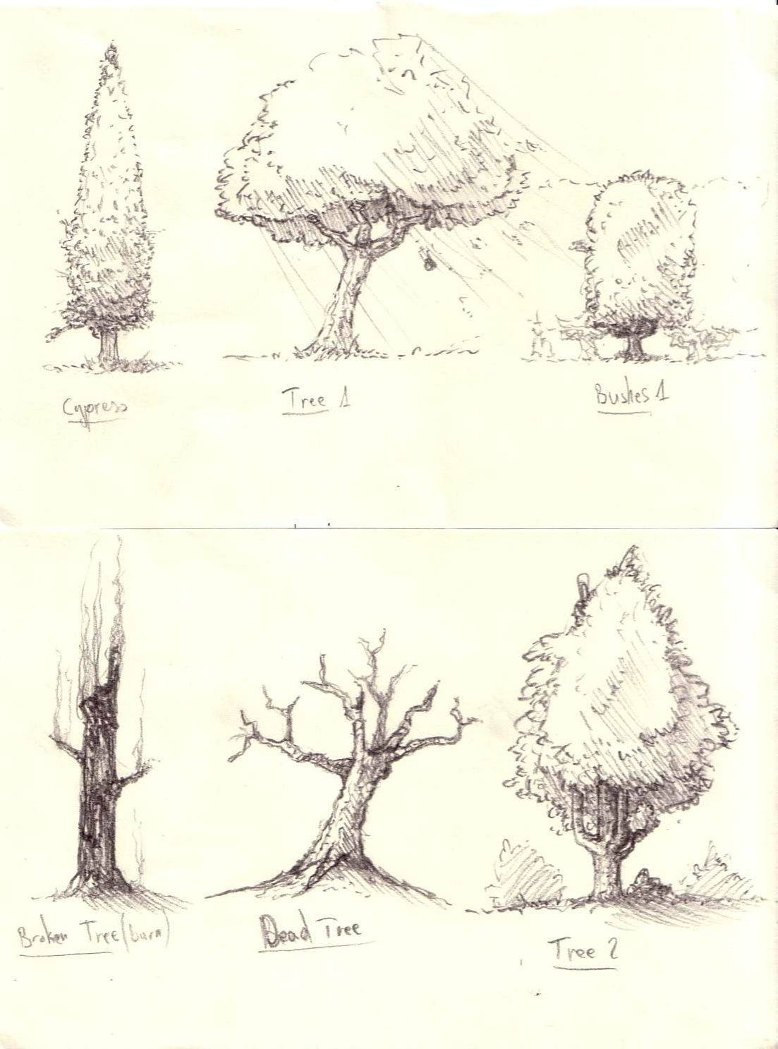 Trees And Bushes Sketches Trees Drawing Tutorial Realistic Drawings Tree Drawing