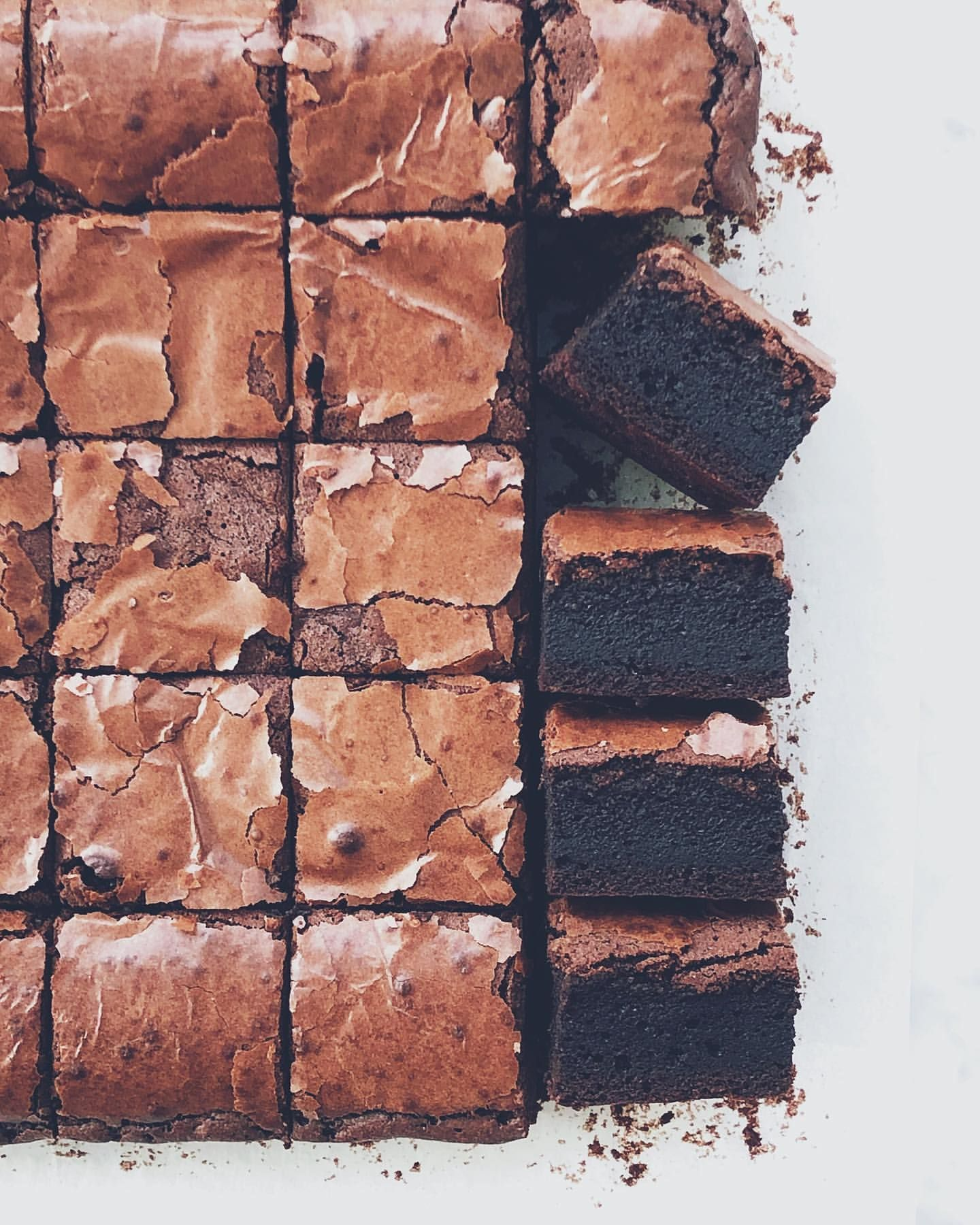Photo of Cocoa Brownies by laciliegina | Quick & Easy Recipe  | The Feedfeed