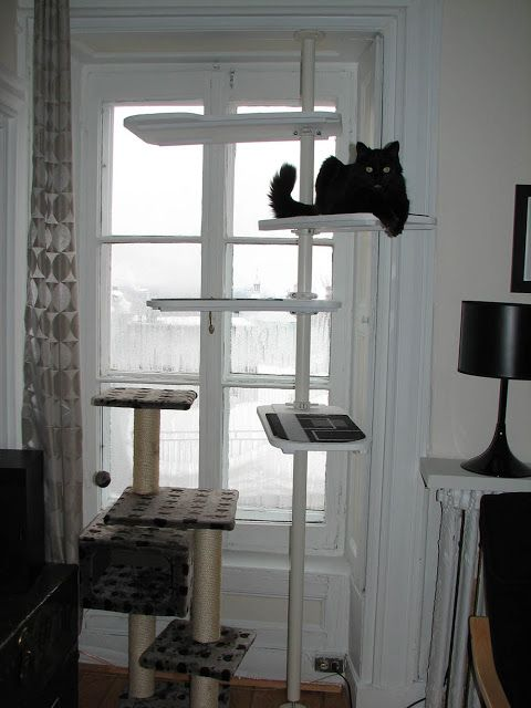 black and white stolmen cat tree cierra anjanie s new apartment rh pinterest com