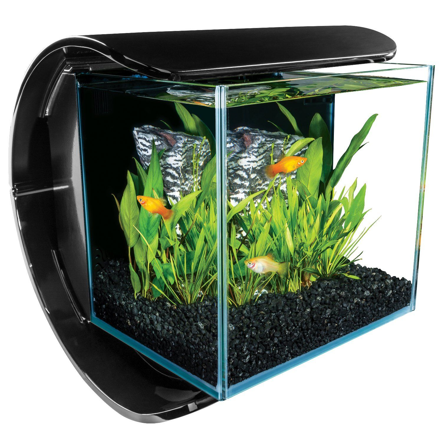 Aquarium fish tank starter kit - The Marineland Silhouette Aquarium Kit Provides A Quick And Stylish Base For Starting Your New Aquarium