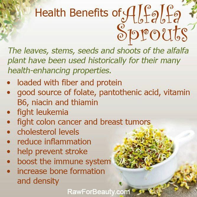 Pin On Herb Spice Blends Extracts Freezing Tips