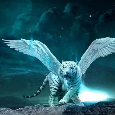 Magical animals | 2048