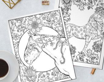 14 Adult Horse Animal Coloring Book Digital Download PDF Pages To Print And Color