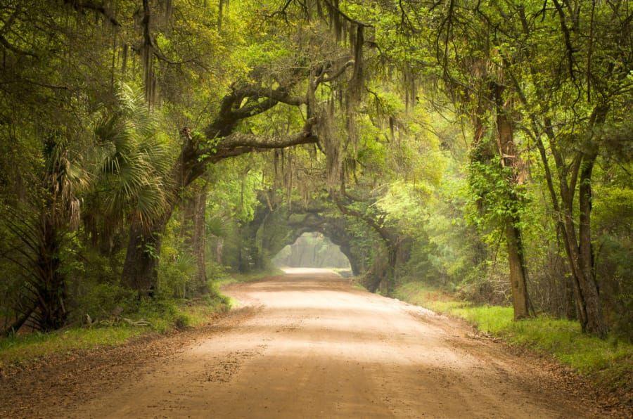 14 Beautiful South Carolina Destinations To Visit Before