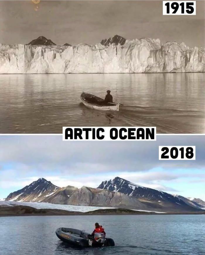 Arctic* (And they say global warming is a myth). - 9GAG