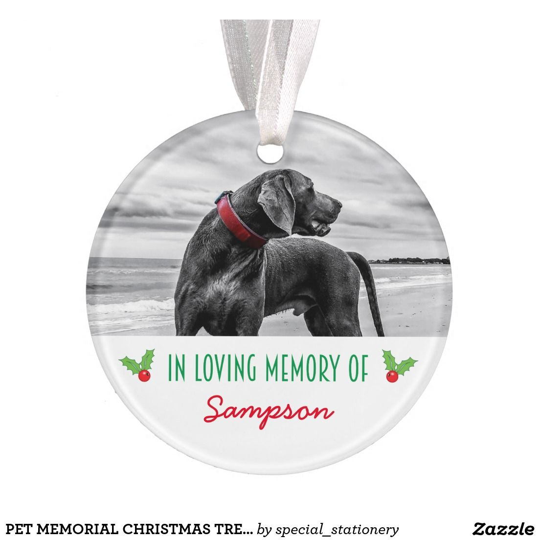 Create your own acrylic ornament pet